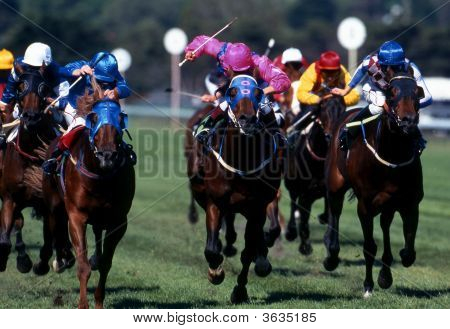 Horse racing Action