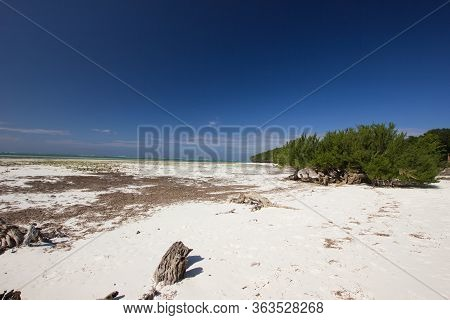 Abandonned White Sand Beach On A Sunny Day