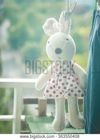 A rabbit doll hanging on the clothesline, Rabbit doll wearing a polka dot dress
