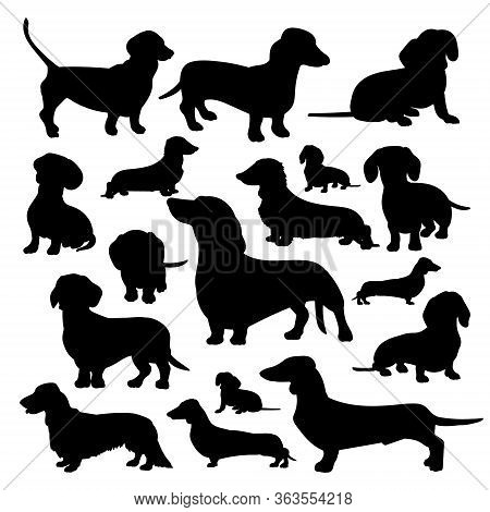 Silhouette Of A Dachshund. Black Silhouette Of A Dog, Set Of Illustrations On A White  Background.