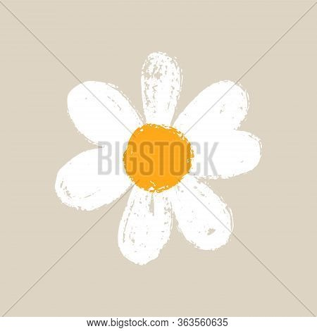 Isolated Cute Daisy Flower. Hand Draw Chamomile Head. Yellow White Floral Marquerite In Simple Flat
