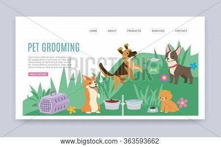 Pet Grooming Service And Healthcare Products Cartoon Web Template Vector Illustration With Dogs Of D