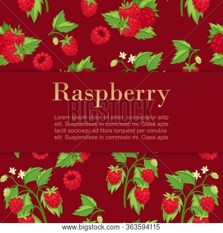 Raspberries Red Background With Summer Fresh Berries, Leaves And Text Cartoon Vector Illustration. P