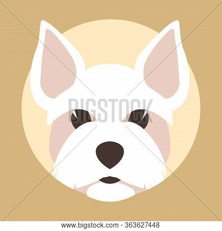 Maltese Head  Dog, Vector Illustration, Flat Style, Front View