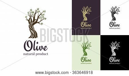 Elegant Olive Tree Isolated Icon. Vector Tree Logo Design Concept. Olive Tree Silhouette Illustratio