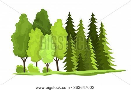 Natural Resources Design. Vector Illustration Of National Treasure Wooden. Illustration Of Renewable