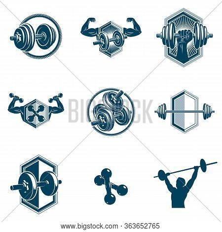 Vector Weightlifting Theme Illustrations Collection Made Using Dumbbells, Barbells And Disc Weights