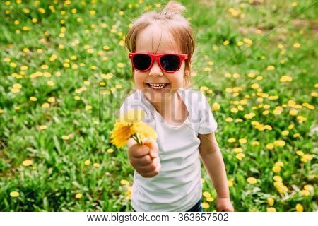 Little girl in sunglasses on the lawn with yellow dandelions. Copy space.