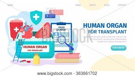 Human Organ For Transplant, Donor Landing Vector Illustration. Clinic Web Page, Organ Donor Search.