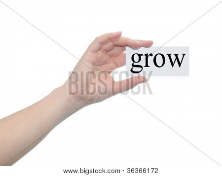 Concept or conceptual human or man hand isolated on white background holding a paper banner with a black text as metaphor for business,management ,marketing,vision,advice,goal,success or growth design