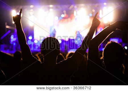 Crowd of fans at night concert
