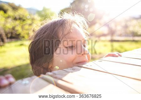 Smiling Boy Peeps From The Wooden Table, A Child Is Peeping From Behind A Wooden Fence, Portrait Of