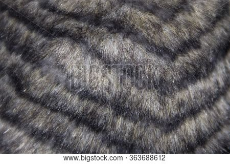 A Grey Faux Fur Texture For Background