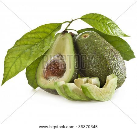 Avocado fruits with young leaves from Avocado tree, isolated on white