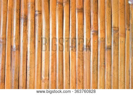Background Material Bamboo Garden Bamboo Forest Bamboo Pole