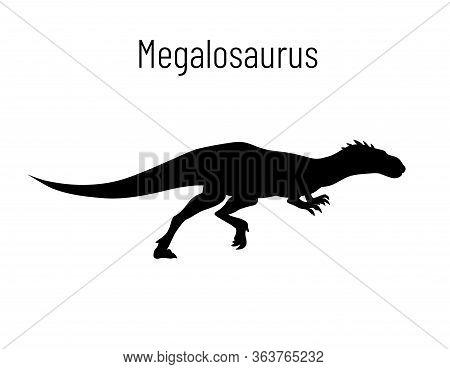 Megalosaurus. Theropoda Dinosaur. Monochrome Vector Illustration Of Silhouette Of Prehistoric Creatu