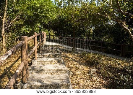 Stairway, Cross Road, Trail, Footpath, Country Road, Alley, Lane In Hong Kong Forest As Background,