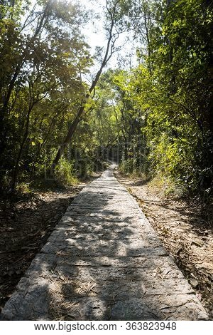 Stone Trail, Footpath, Country Road, Pathway, Alley, Lane In Forest As Background, Tsing Yi Nature T