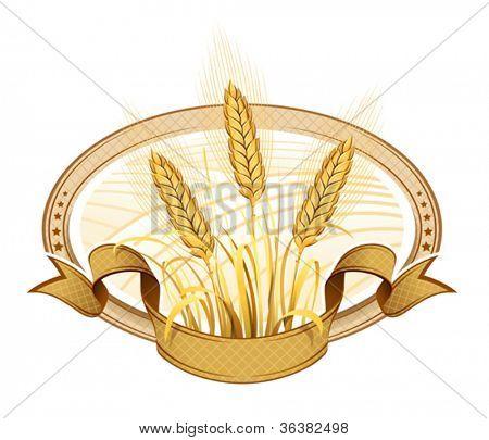 Wheat ears. Vector