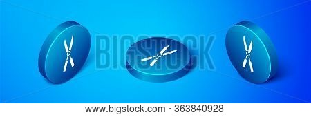 Isometric Gardening Handmade Scissors For Trimming Icon Isolated On Blue Background. Pruning Shears