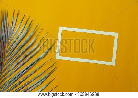 Table Top View Aerial Image Of Summer Season Holiday Background Concept.flat Lay White Frame Coconut