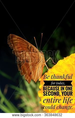 Inspirational Quote - Be Thankful For Today. Because In One Second, Your Entire Life Could Change.