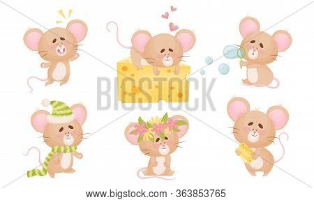 Cartoon Mouse With Big Ears And Long Tail Sleeping On Cheese Slab And Blowing Bubbles Vector Set