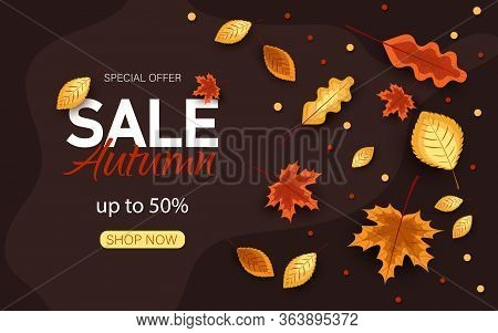 Autumn sale vector background. Autumn sale and discount text in red space with maple autumn  leaves in autumn textured background for fall season marketing promotion. Vector illustration.