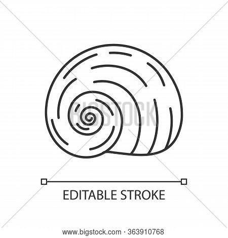 Spiral Shell Pixel Perfect Linear Icon. Gastropod Seashell Thin Line Customizable Illustration. Cont