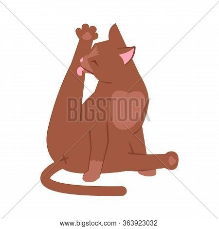 Cat Licking Leg Semi Flat Rgb Color Vector Illustration. Adorable Brown Kitty Cleaning Itself Isolat