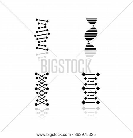 Dna Chains Drop Shadow Black Glyph Icons Set. Deoxyribonucleic, Nucleic Acid Helix. Spiraling Strand