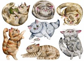 Watercolor Cats Set. Cute Funny Characters, Cat Emotions And Feelings. Isolated Objects On White Bac