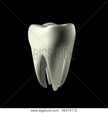 White Teeth Maked In Mesh