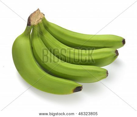Green Banana Bundle
