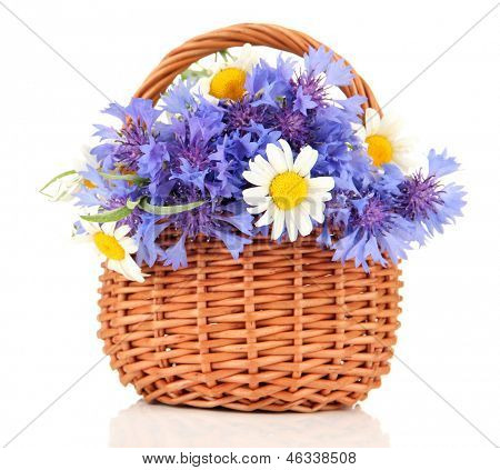 Beautiful bouquet of cornflowers and chamomiles in basket, isolated on white poster