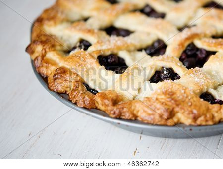 blueberry pie from side