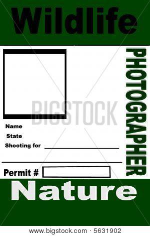 Wildllife Photographer ID