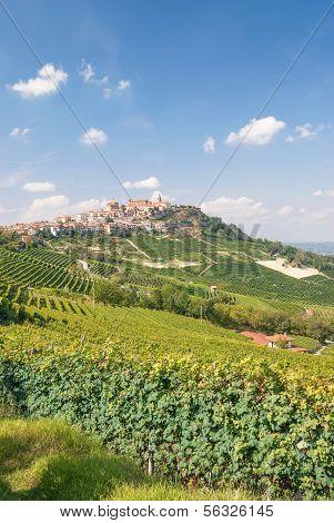 La Morra near Asti in Piedmont,Italy