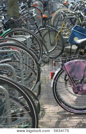 Bicykle In Amsterdam