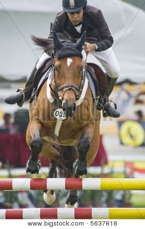 Premier Cup Equestrian Show Jumping