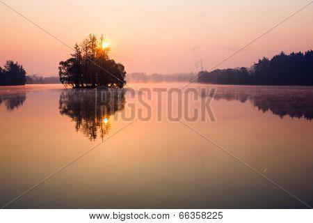 Trees on lake early at sunrise