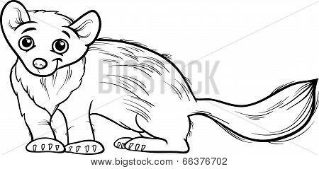 Marten Animal Cartoon Coloring Book