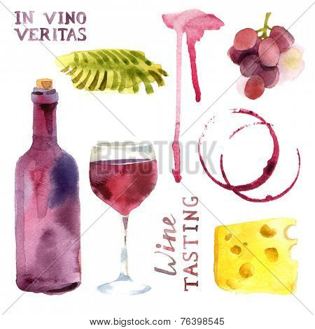 Bright watercolor wine design elements (in vino veritas - verity in wine)