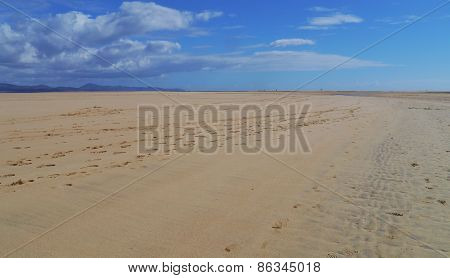 The vast sandy beaches of Fuerteventura