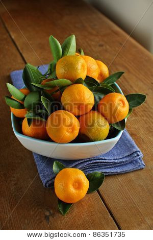 Home grown calamondins, freshly picked and ready to eat, although a little sour.