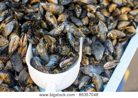 Fresh Mussels On Fish Farmer Market In Provence