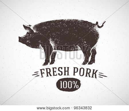 Graphic pig. Vector illustration, drawn by hand.
