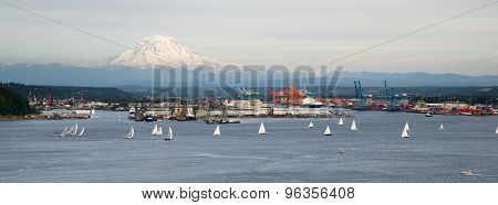 Sailboat Regatta Commencement Bay Puget Sound Downtown Port Tacoma Washington