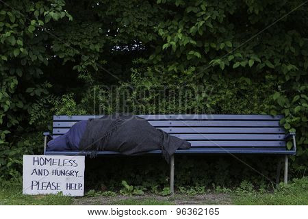 Homeless man on park bench