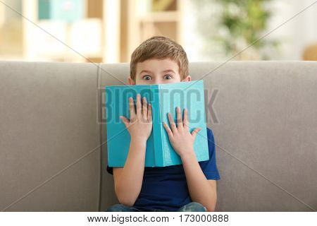Little boy reading book on sofa indoors